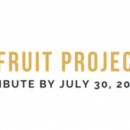 Contribute to the THIRD Dragon Fruit Project Zine!